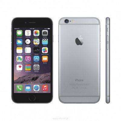 Apple iPhone 6 Plus 16GB gwiezdna szarość (MGA82PK/A)